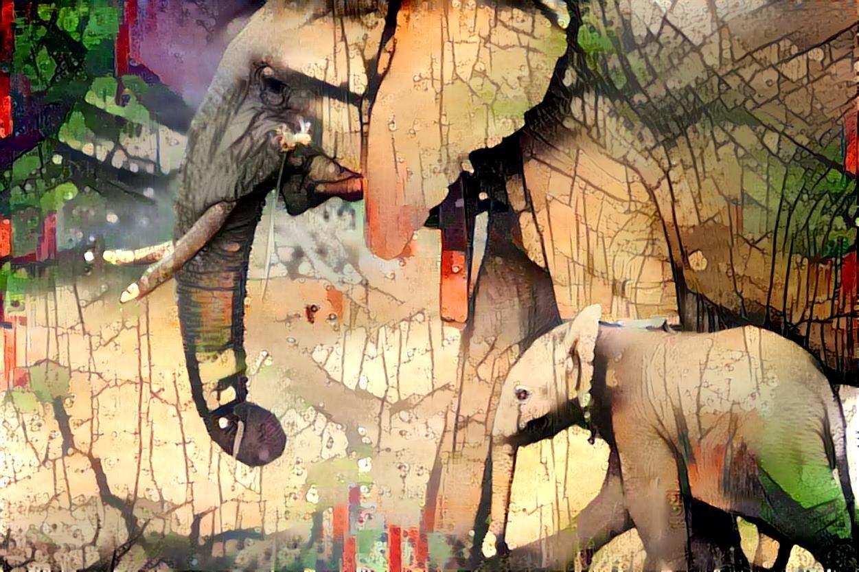 Elephant_4288