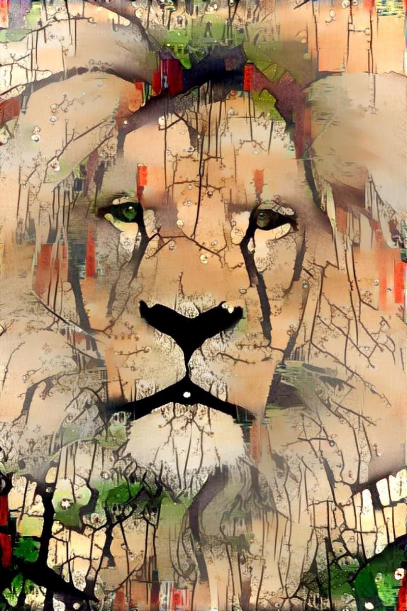 Lion_4290