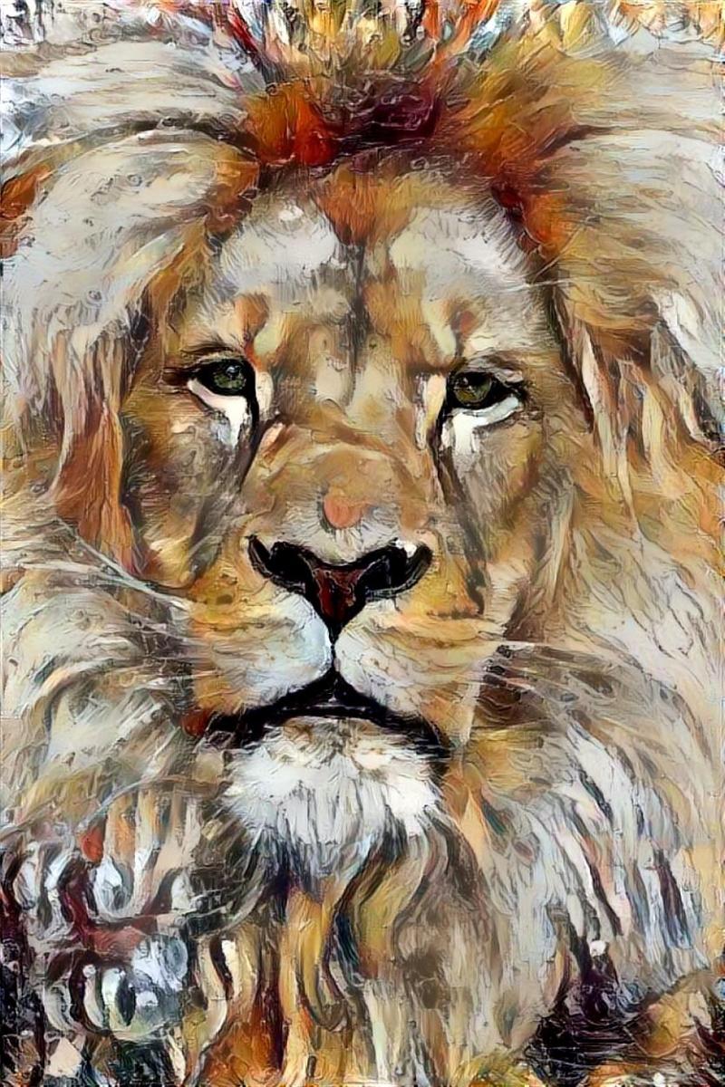 Lion_4324