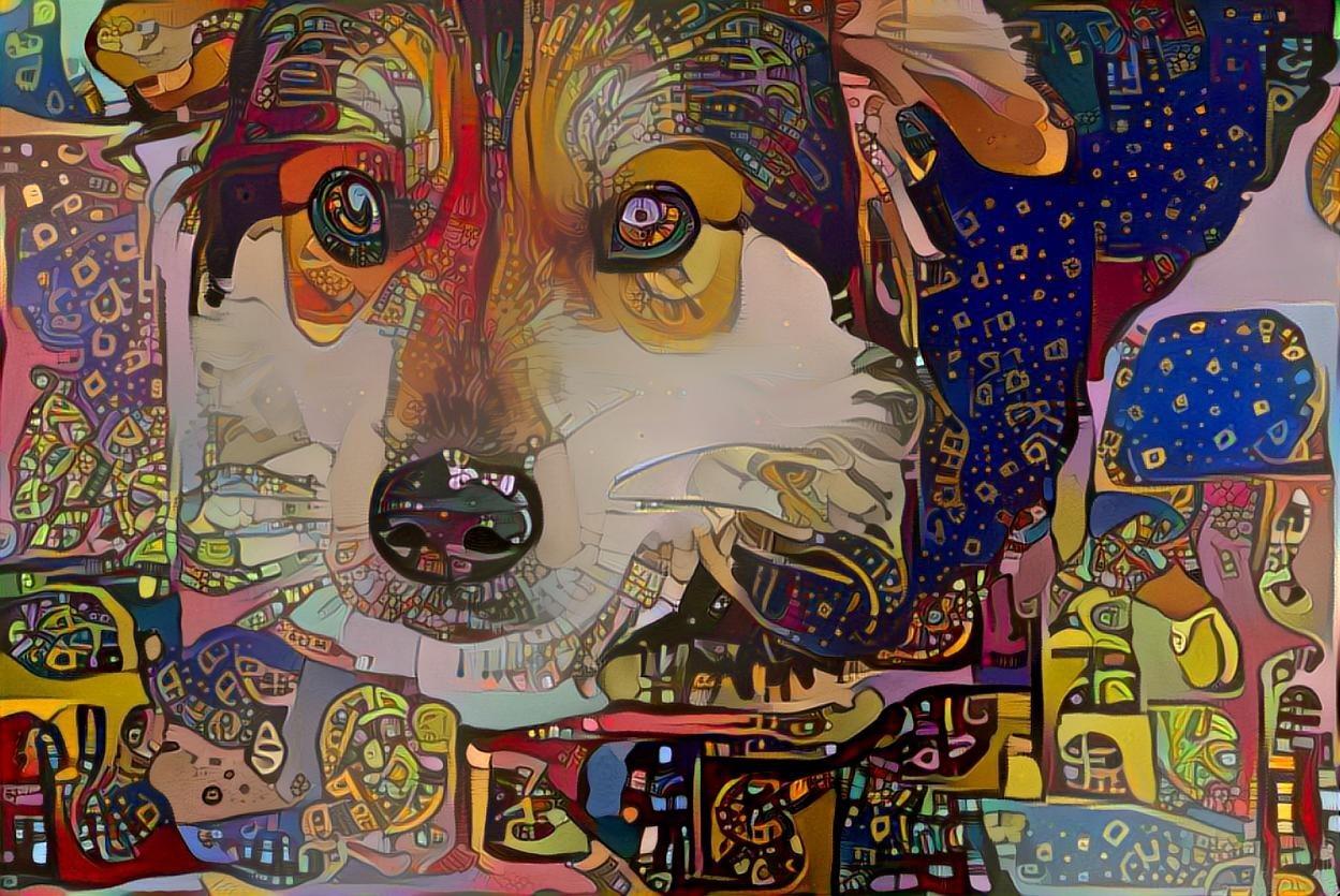 Dog_4333