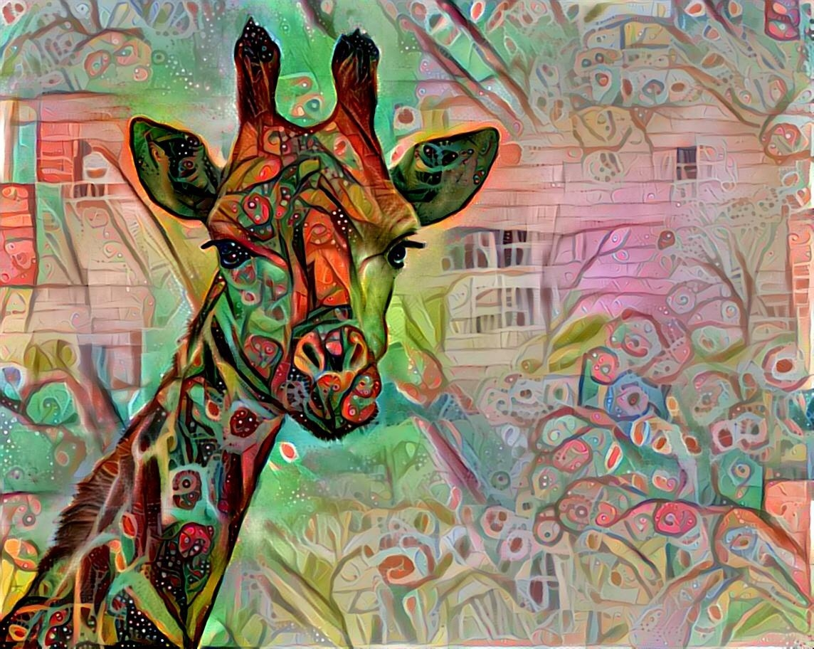 Giraffe_4334