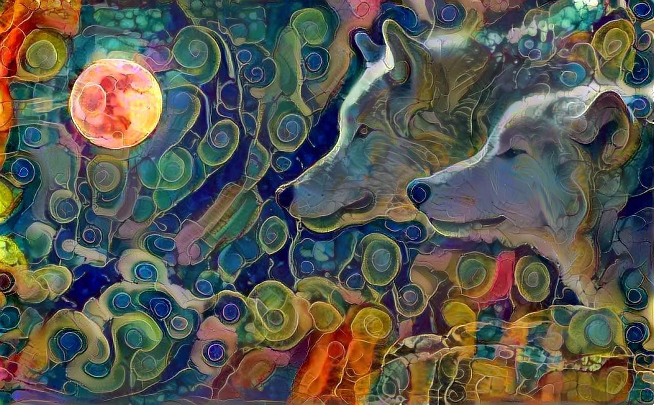 Wolf_4336