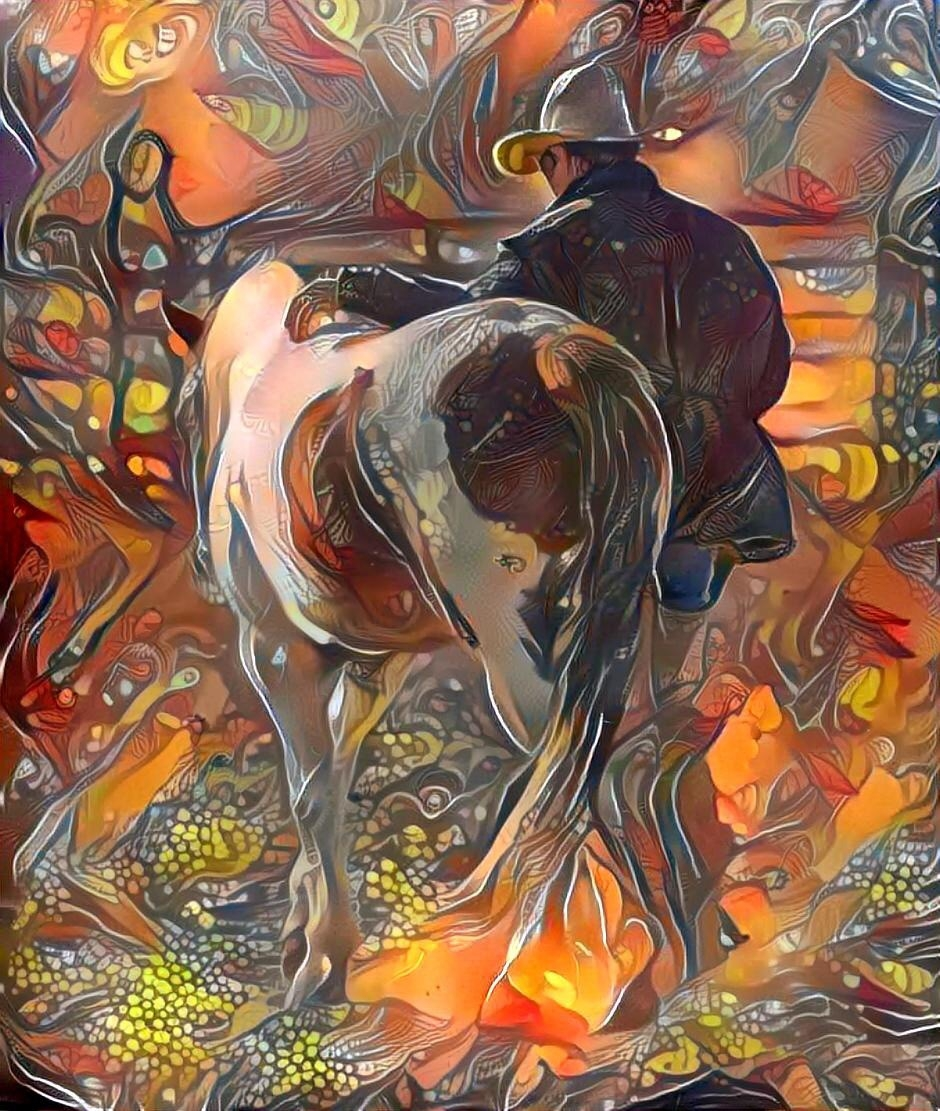 Horse_4338