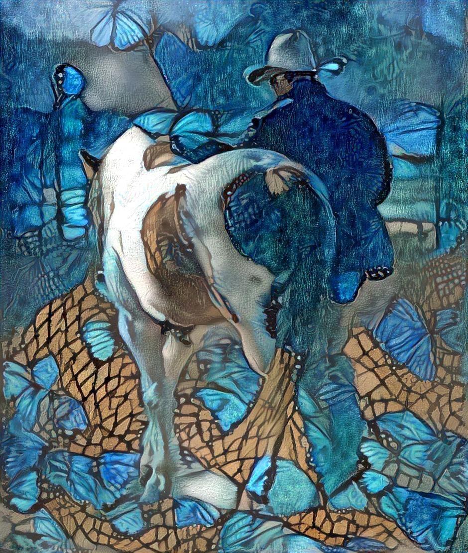 Horse_4342