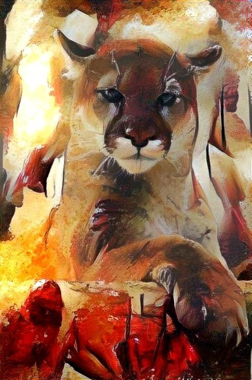Lion_4368