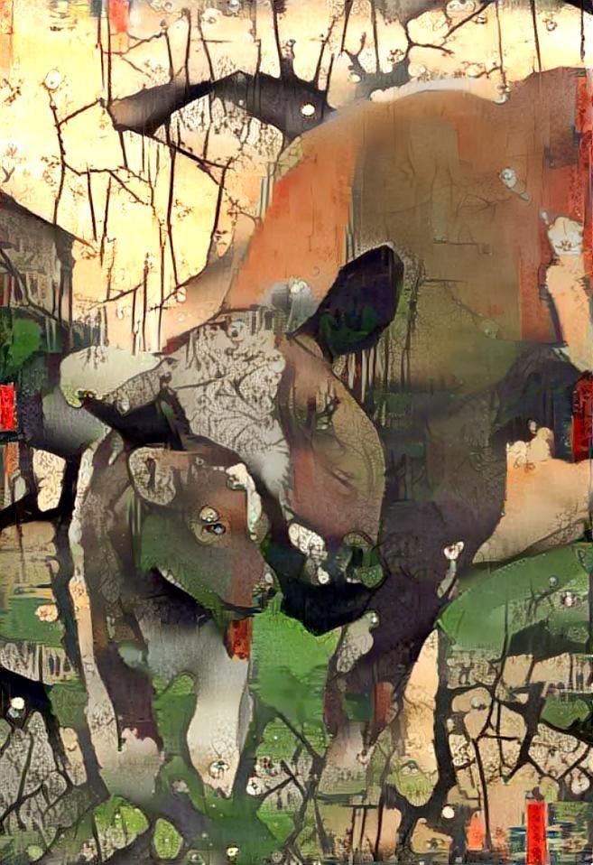 Cow_4372