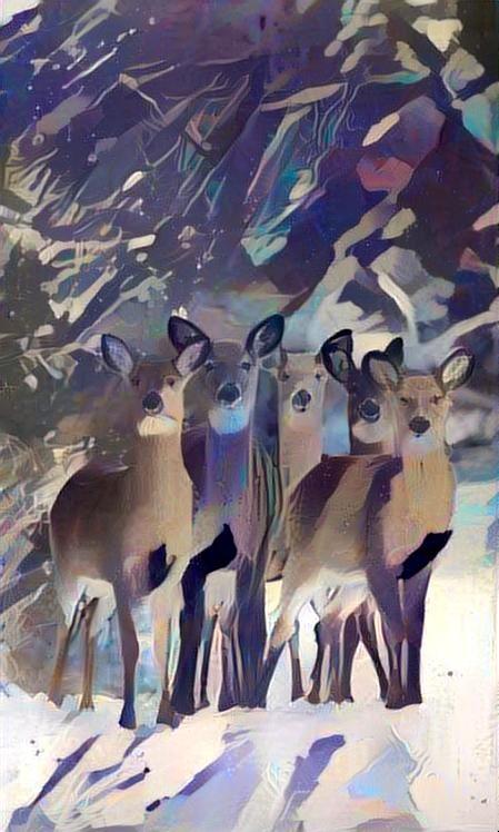 Deer_4389