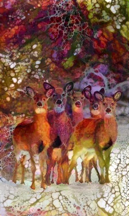 Deer_4393
