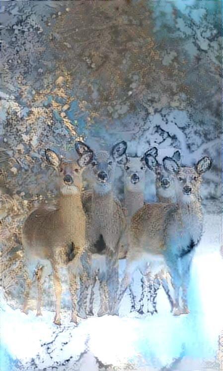 Deer_4404
