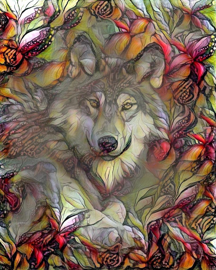 Wolf_4420