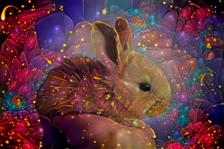 Rabbit _4424