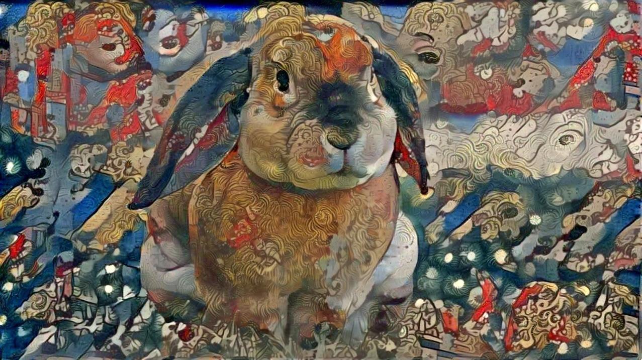 Rabbit _4426