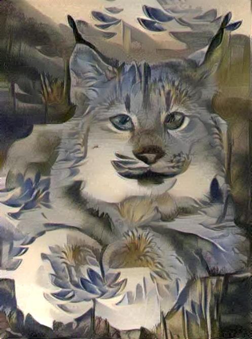 Lynx_4427