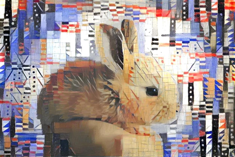 Rabbit _4432