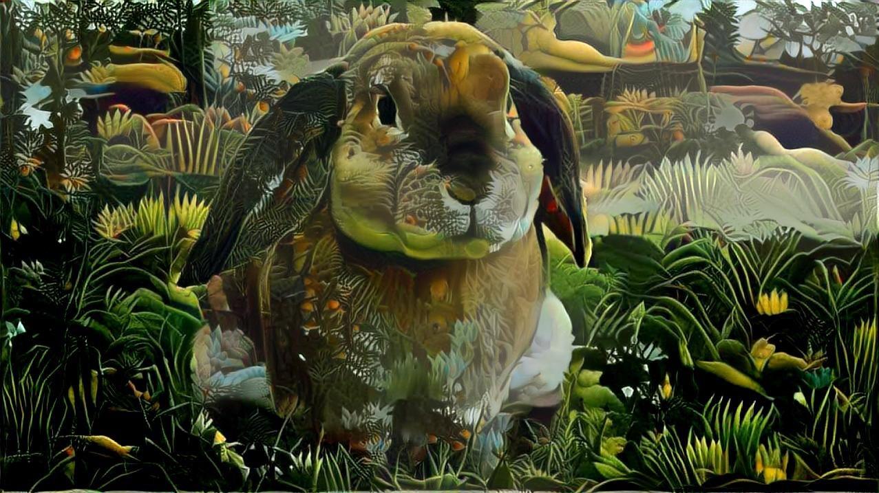 Rabbit _4433