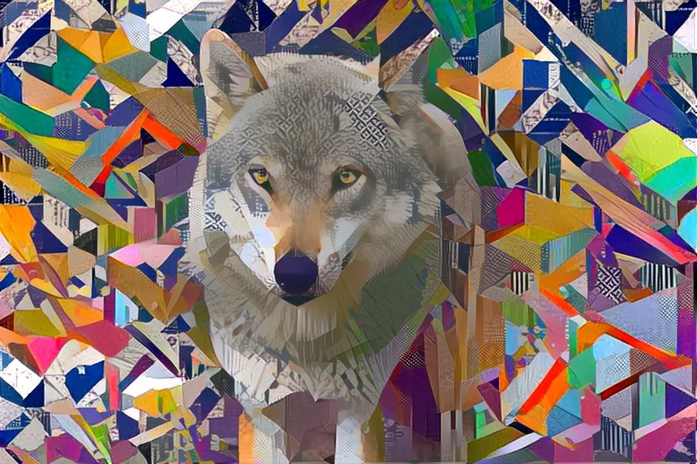 Wolf_4437