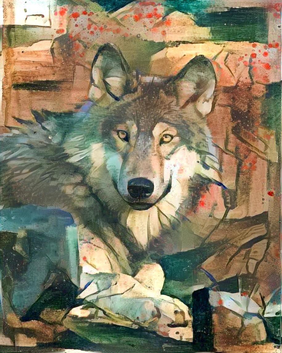 Wolf_4439
