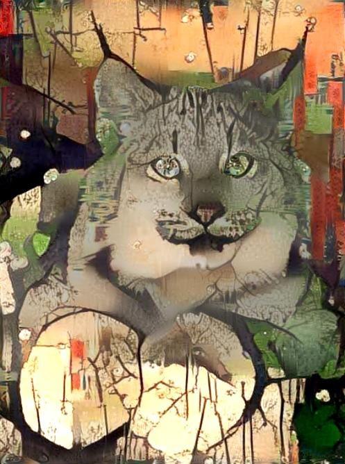 Lynx_4446
