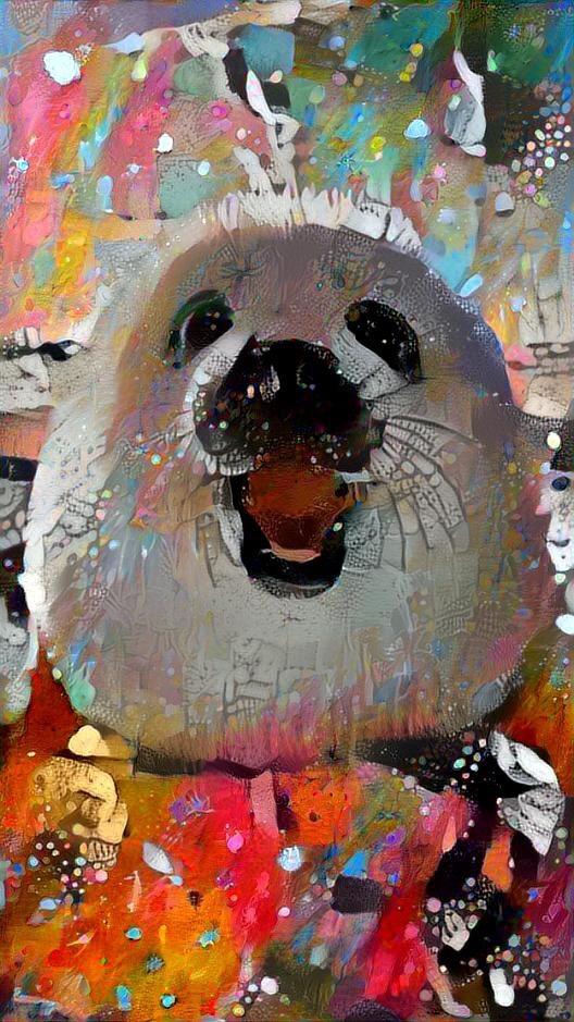 Seal_4447