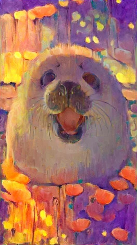 Seal_4448