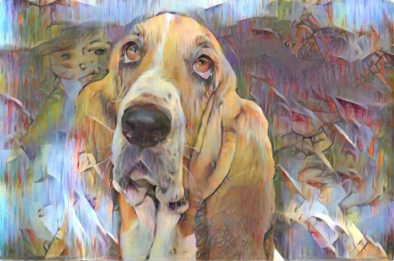 Dog_4468