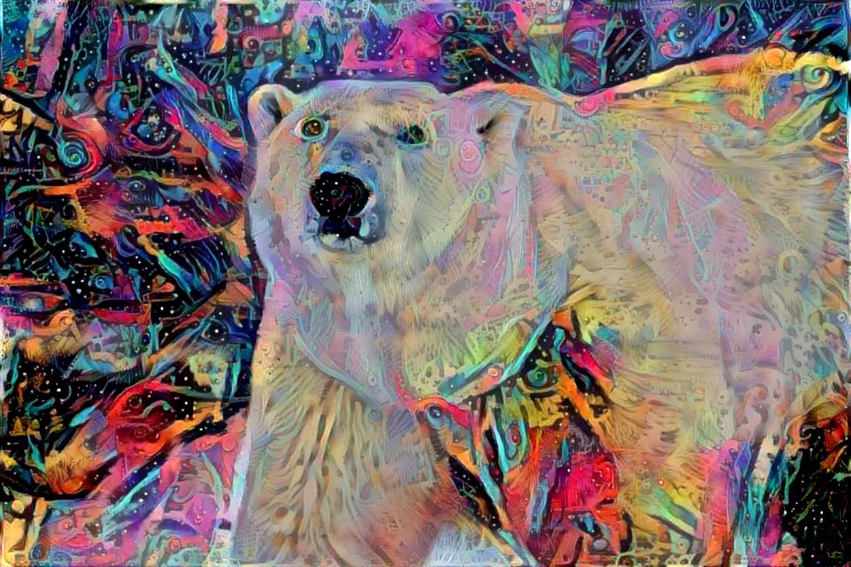 Polar Bear_4484