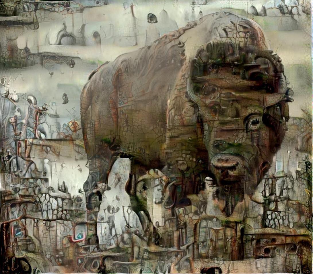 Buffalo _4486