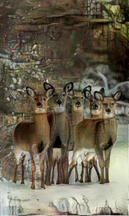 Deer_4491