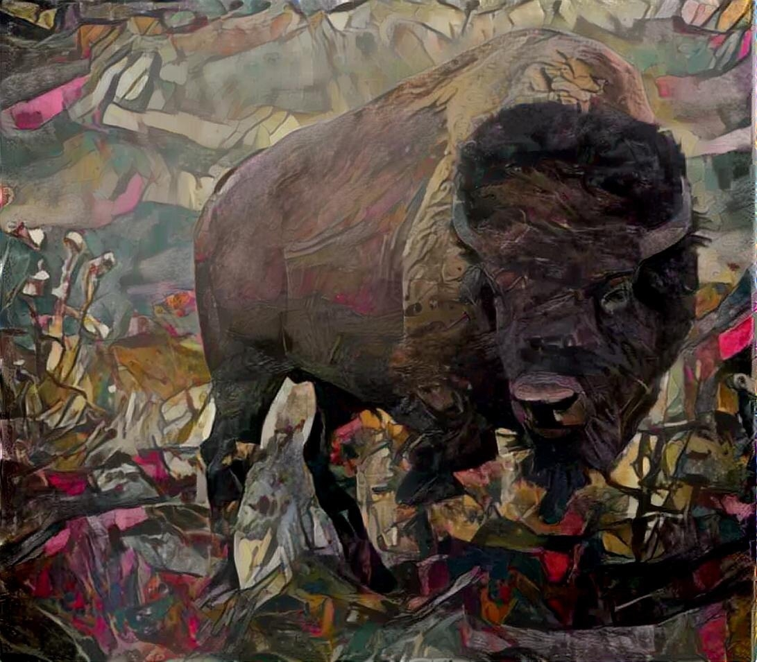 Buffalo _4494