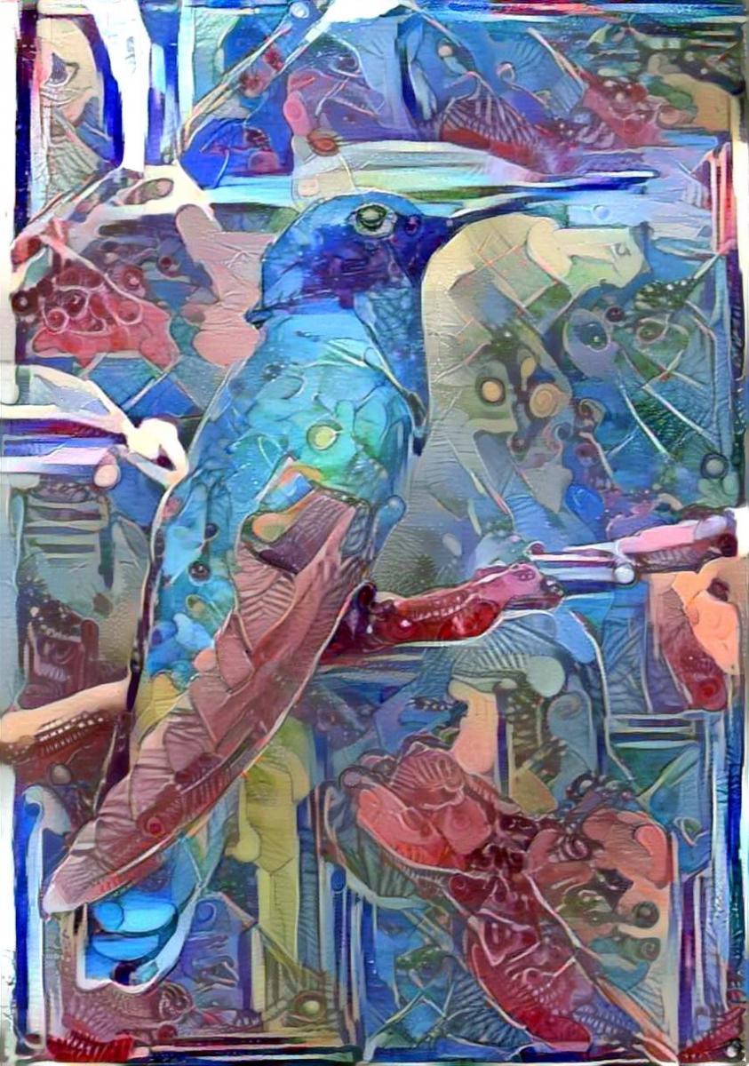 Bird_4517