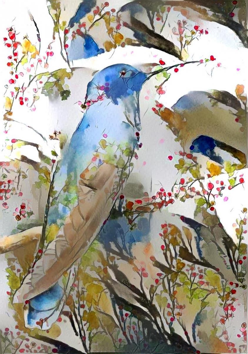 Bird_4530