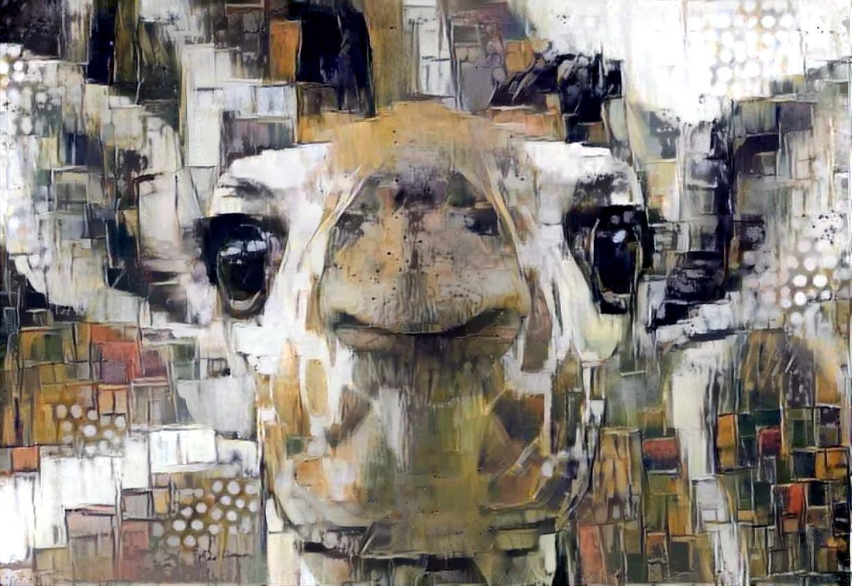 Giraffe _4563