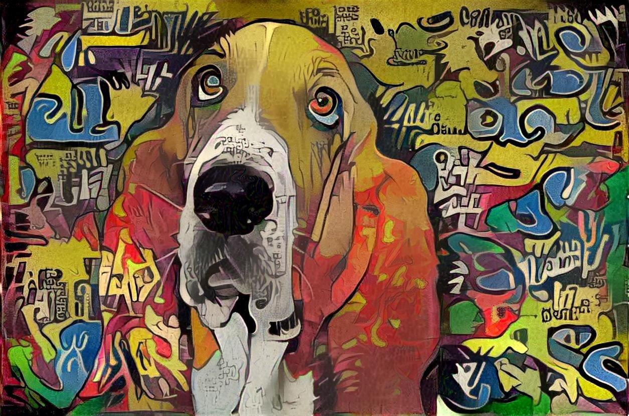 Dog_4625