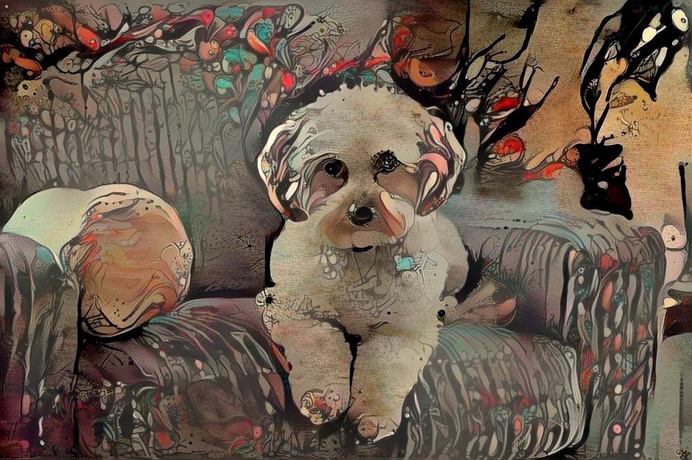 Dog_4651