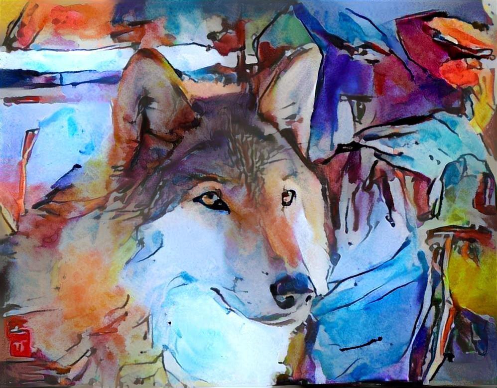 Dog_4652