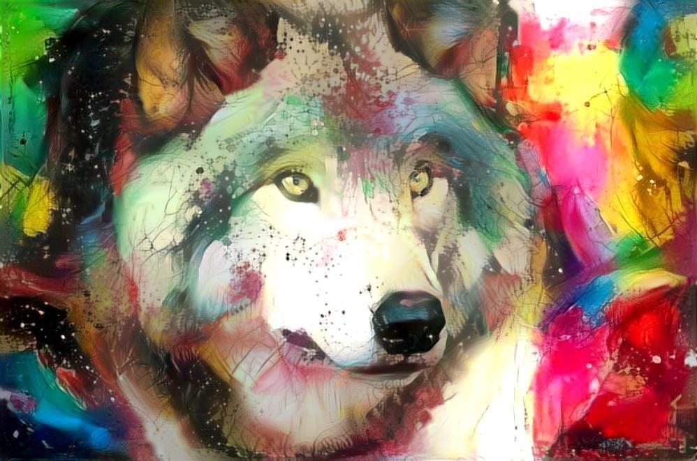 Wolf_4657