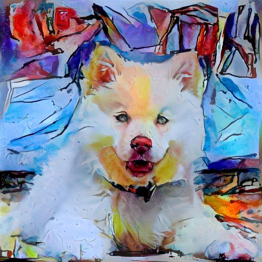 Dog_4659