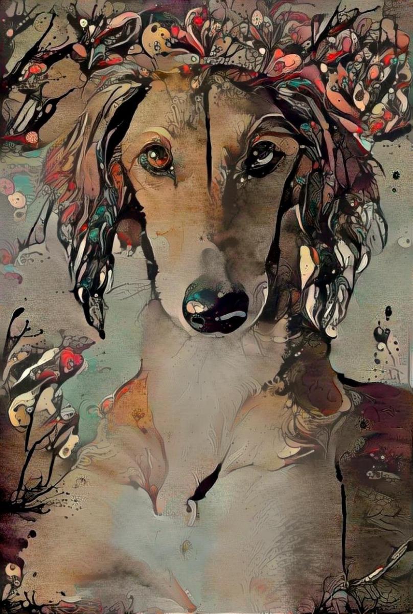 Dog_4666