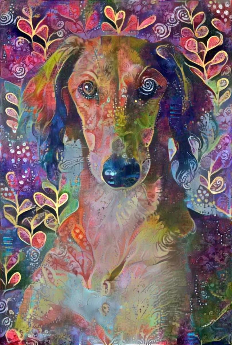 Dog_4670