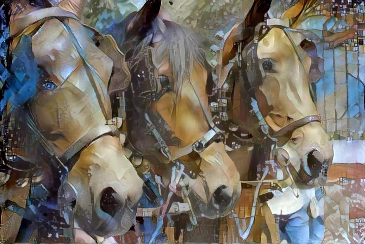 Horse_4687