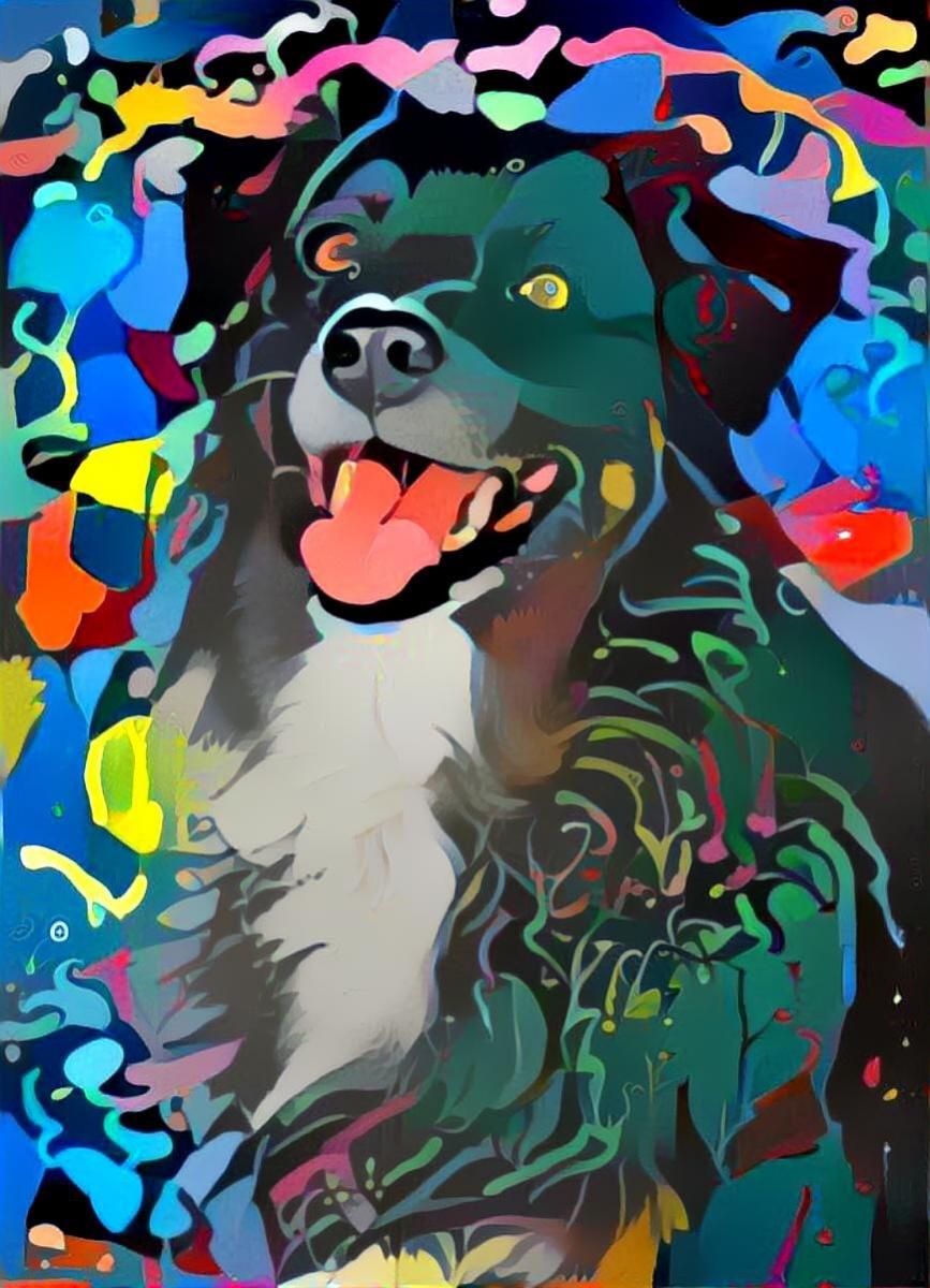 Dog_4692