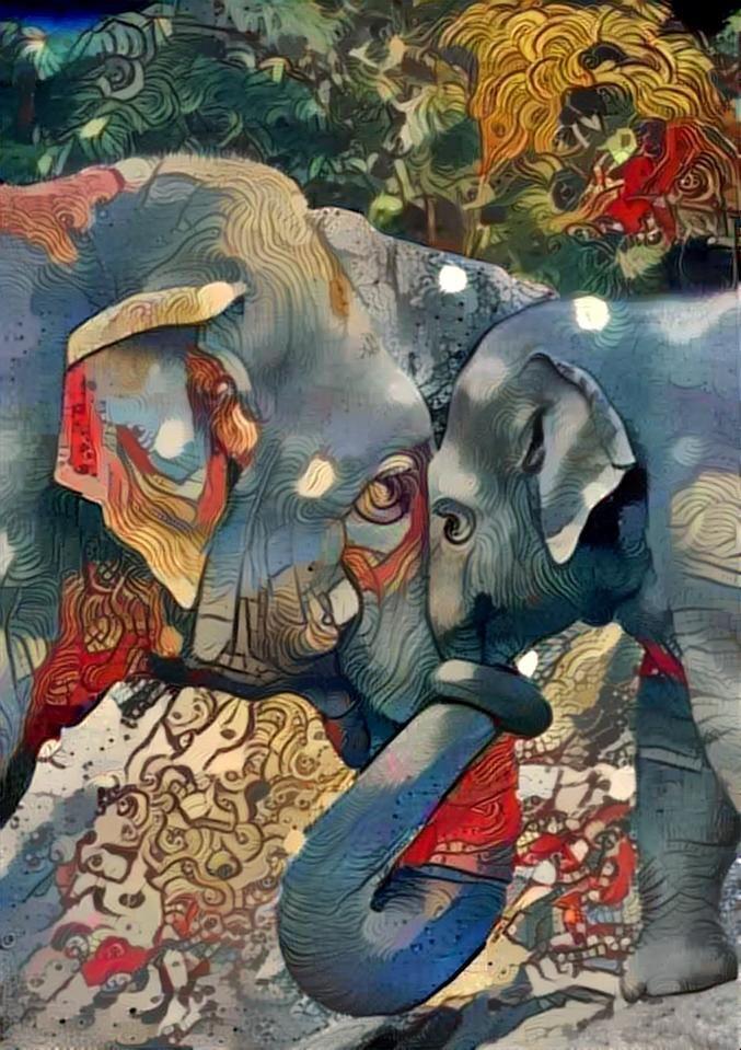 Elephant _4804