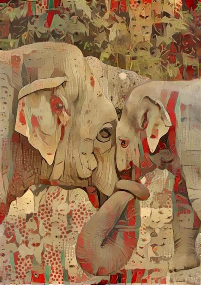 Elephant _4818