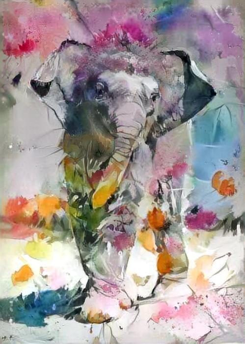 Elephant_4872