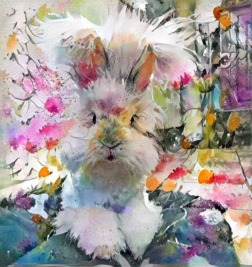 Rabbit _4875