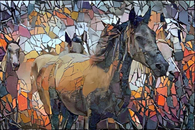 Horse_4893