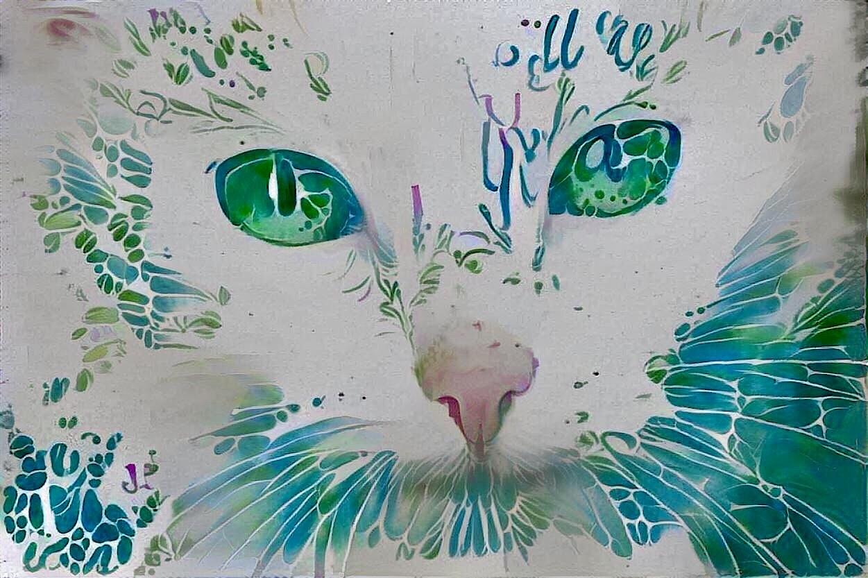 Cat_4908