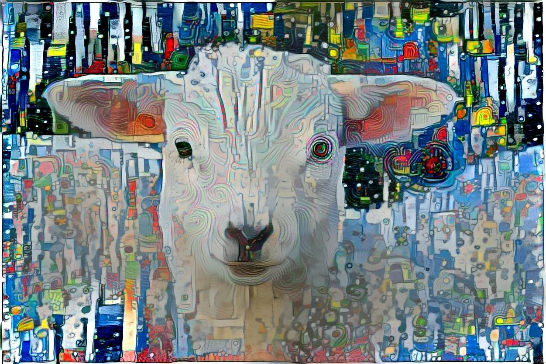 Sheep _4946