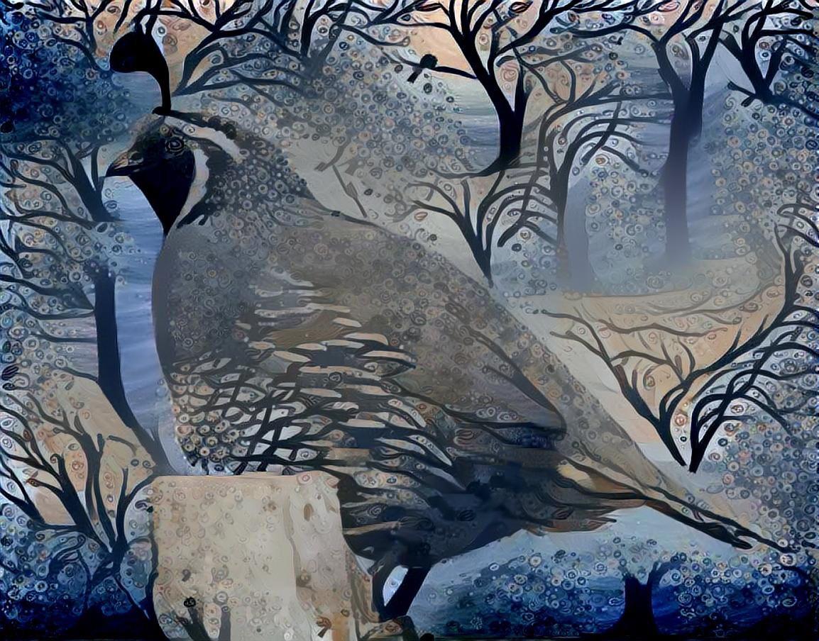 Bird_4985