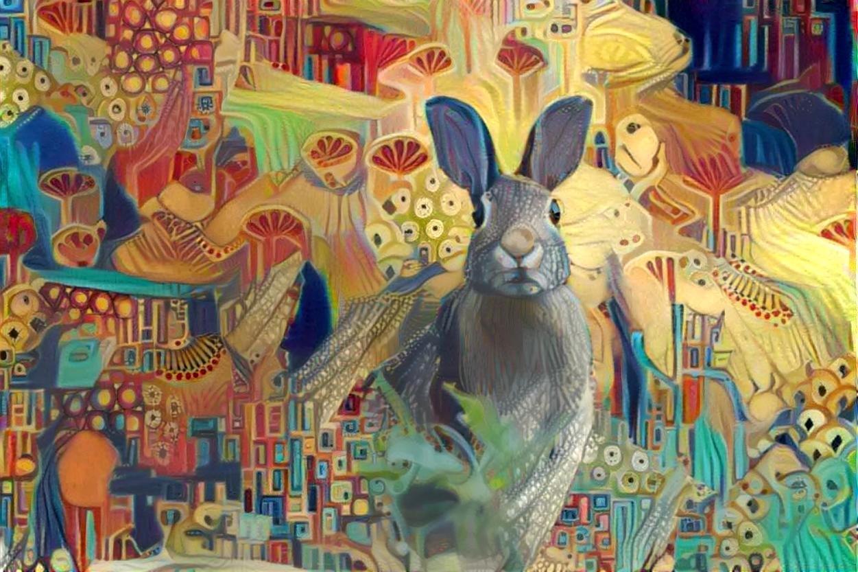 Rabbit_4997
